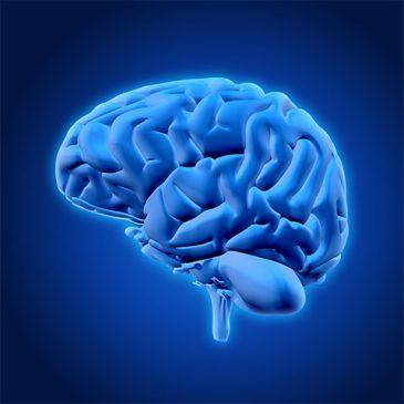 دورة قراءة العقل